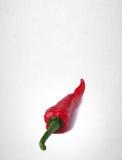 Spaanse peper of Roodgloeiende Spaanse peperpeper op achtergrond Stock Fotografie