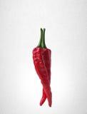 Spaanse peper of Roodgloeiende Spaanse peperpeper op achtergrond Stock Afbeelding