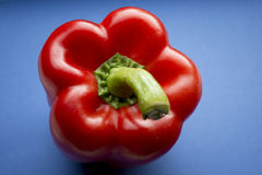 Spaanse peper tegen Blauw Royalty-vrije Stock Foto's