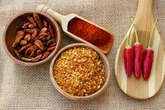 Spaanse peper, vers, droog, verbrijzeling en als poeder stock afbeelding