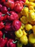 Spaanse pepergroene paprika Stock Afbeelding