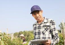 Spaanse peperlandbouwers Stock Fotografie