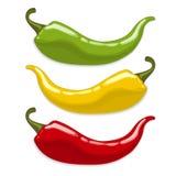 Spaanse peperpeper.   Stock Afbeelding