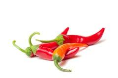 Spaanse peperpeper Stock Fotografie