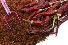 Spaanse peperpeper Stock Afbeelding
