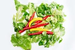 Spaanse peperpeper op een salade Royalty-vrije Stock Foto