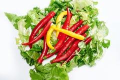 Spaanse peperpeper op een witte achtergrond wordt geïsoleerd die Royalty-vrije Stock Afbeeldingen