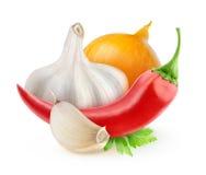 Spaanse peperpeper, ui en knoflook royalty-vrije stock foto