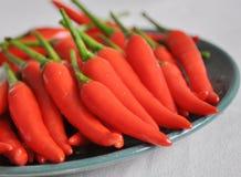 Spaanse pepers Stock Afbeeldingen