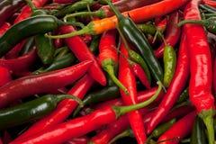 Spaanse pepers Royalty-vrije Stock Fotografie