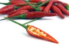 Spaanse pepers Stock Foto