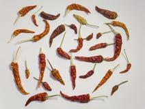 Spaanse pepers Stock Afbeelding