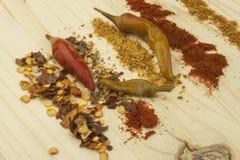 Spaanse pepers aan nette raad Hete kruiden, droge Spaanse pepers Stock Afbeelding