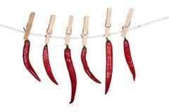 Spaanse pepers die op een kabel hangen Stock Afbeeldingen