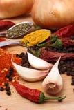 Spaanse pepers en kruiden Stock Foto