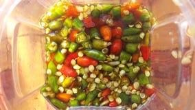 Spaanse pepers en vissensaus Stock Afbeeldingen