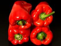 Spaanse pepers op zwarte achtergrond Royalty-vrije Stock Foto's