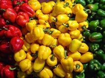 Spaanse pepersgroene paprika's Royalty-vrije Stock Afbeeldingen