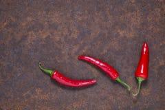 Spaanse peperspeper op donkere achtergrond stock afbeelding