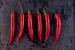 Spaanse peperspeper op roestige metaalachtergrond Stock Foto