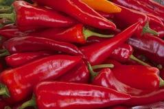 Spaanse peperstapel Stock Foto's