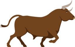 Spaanse stier Stock Foto
