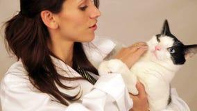 Spaanse veterinaire holdingskat stock video