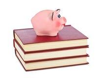 Spaarvarken en boeken Royalty-vrije Stock Afbeeldingen