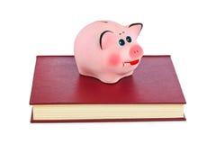 Spaarvarken en boeken Royalty-vrije Stock Foto's