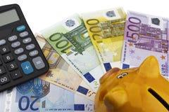 Spaarvarken en Euro (EUR) Stock Afbeelding