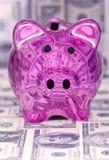 Spaarvarken met dollarrekeningen Royalty-vrije Stock Foto's