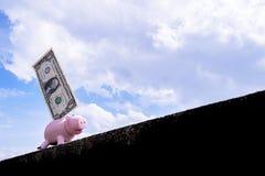 Spaarvarken met een dollar Stock Fotografie