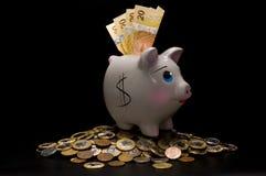 Spaarvarken met geld Royalty-vrije Stock Afbeelding