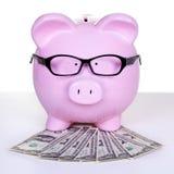 Spaarvarken met geld. Royalty-vrije Stock Foto