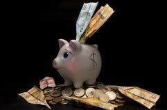 Spaarvarken met geld en muntstuk Royalty-vrije Stock Foto's