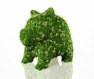 Spaarvarken met gras wordt behandeld dat Stock Fotografie