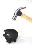 Spaarvarken met hamer Stock Fotografie