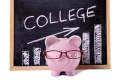 Spaarvarken met van universiteitsbesparingen of prijzen grafiek Royalty-vrije Stock Afbeeldingen