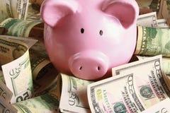 Spaarvarken op Dollars Stock Fotografie