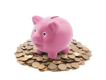 Spaarvarken op een stapel van muntstukken Stock Fotografie