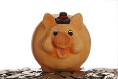 Spaarvarken op muntstukken Stock Foto's