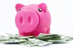 Spaarvarken op stapel van 100 dollarsnota's Stock Foto