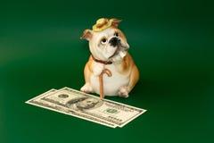 Spaarvarken voor geld, in het beeld dat van oligarch wordt vertegenwoordigd royalty-vrije stock afbeelding