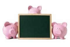 Spaarvarkens met leeg bord royalty-vrije stock afbeeldingen