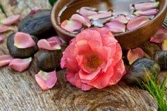 Spabegrepp. rosa färgblomma med zenpebbles Arkivfoton