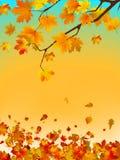 spac för 8 för höstkort kulör för kopia leafs för eps royaltyfri illustrationer