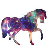 Space Animal Galaxy Horse royalty free stock image