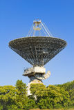 Space antenna. Old big metal space antenna in forest Stock Images