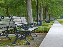 Space Available. A park bench in Charleston, SC Royalty Free Stock Photo