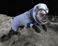 Space Dog, Moon Walk, Astronaut, Lunar Surface royalty free illustration
